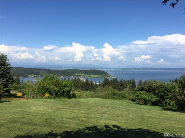 591 Green Island Way, Camano Island, WA 98282 (#1345080) :: Ben Kinney Real Estate Team
