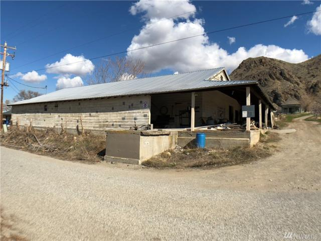 64 Zanol Loop Rd, Orondo, WA 98843 (MLS #1409668) :: Nick McLean Real Estate Group
