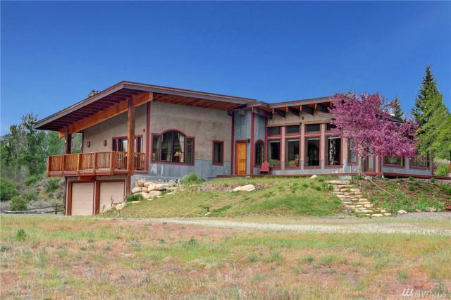 22 Osprey Lane, Twisp, WA 98856 (#1455775) :: Canterwood Real Estate Team