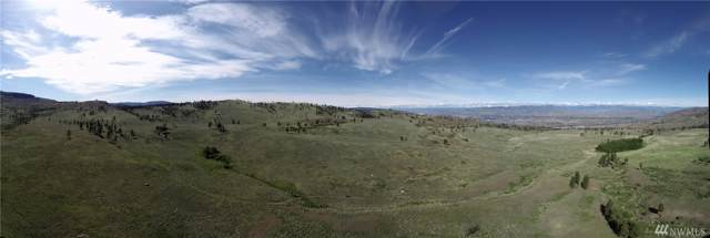 0 Omak Mountain Rd, Omak, WA 98841 (#1458756) :: Real Estate Solutions Group