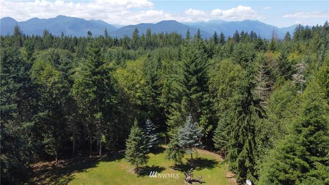 265 Blueberry Hill Drive, Quilcene, WA 98376 (#1637765) :: Hauer Home Team