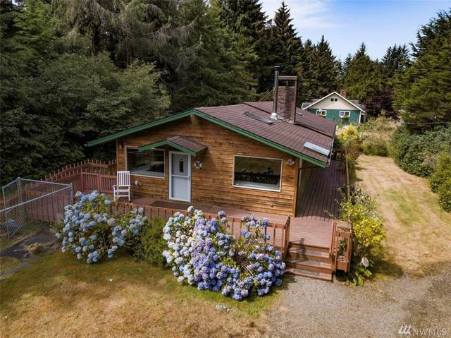 2002 200th Lane, Ocean Park, WA 98640 (#1639575) :: Better Homes and Gardens Real Estate McKenzie Group