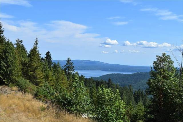 9999 Rocky Brook Road, Brinnon, WA 98320 (#1790399) :: Lucas Pinto Real Estate Group