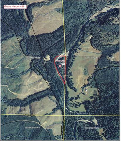 0-X Middle Fork Satsop, Satsop, WA 98541 (#388132) :: Ben Kinney Real Estate Team