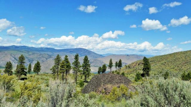 0 Bigelow Springs Rd, Orondo, WA 98843 (#790359) :: Homes on the Sound