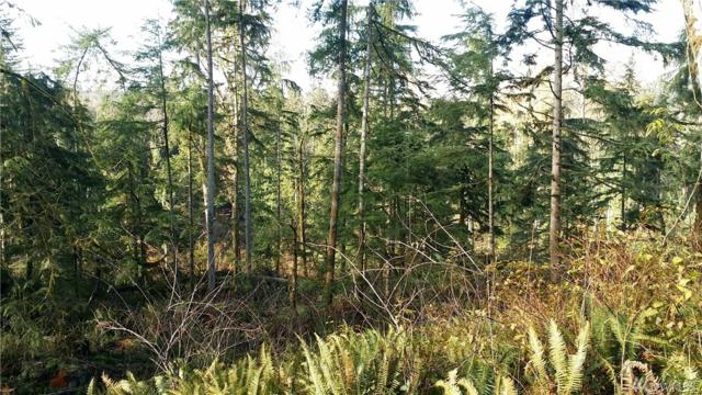 151-XX Wilkeson-Spiketon R (Lot 3), Wilkeson, WA 98396 (#873765) :: Homes on the Sound
