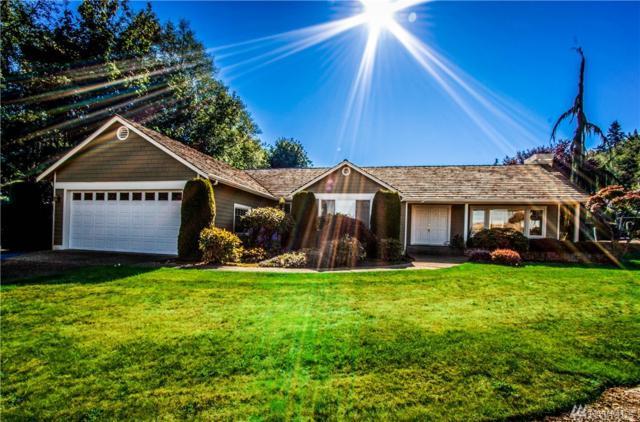 361 Alta Via Dr, Camano Island, WA 98282 (#1082869) :: Ben Kinney Real Estate Team