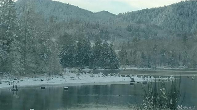 129 Rainier Vista Dr, Mineral, WA 98355 (#1220150) :: Keller Williams - Shook Home Group
