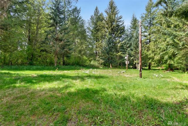 21328 Sr 706 E, Elbe, WA 98330 (#1446548) :: Platinum Real Estate Partners