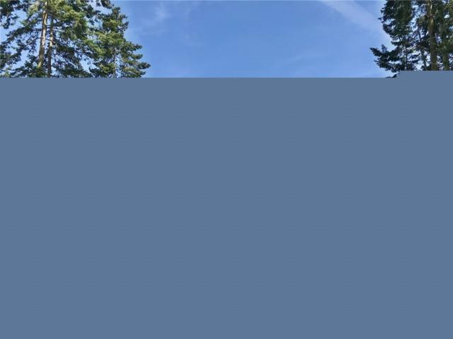 487 Race Rd, Coupeville, WA 98239 (#1446812) :: Kimberly Gartland Group