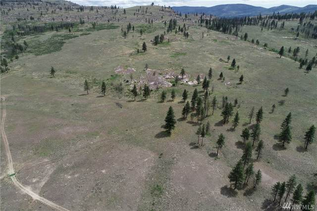 0 Omak Mountain Rd, Omak, WA 98841 (#1458756) :: The Kendra Todd Group at Keller Williams