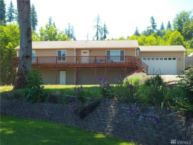 203 Lakeview Dr, Mossyrock, WA 98564 (#1460033) :: Crutcher Dennis - My Puget Sound Homes