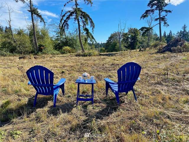 0 Twin Oaks Lane, Freeland, WA 98249 (#1667480) :: NextHome South Sound