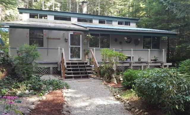 51 N Bearden Way, Hoodsport, WA 98548 (#1749320) :: Ben Kinney Real Estate Team