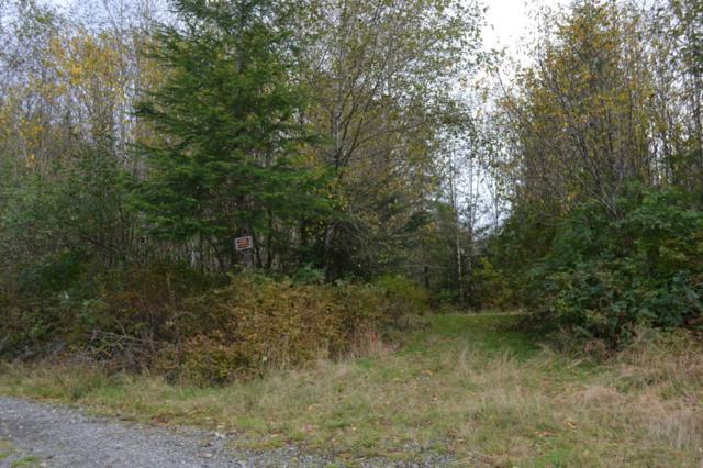 9999 W Jefferson 20 Lot, Forks, WA 98331 (#706757) :: Ben Kinney Real Estate Team