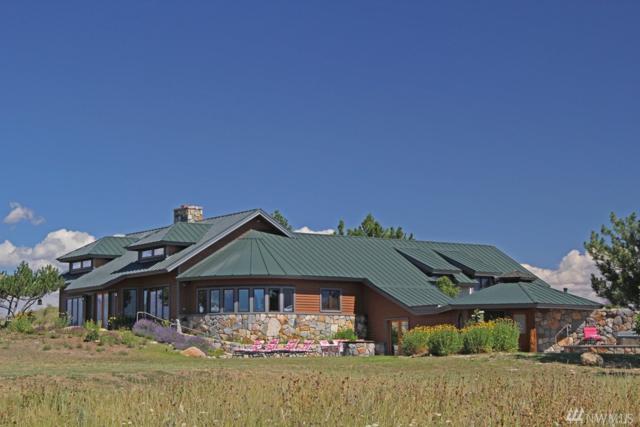 307 Stud Horse Mountain Rd, Winthrop, WA 98862 (#977653) :: Ben Kinney Real Estate Team