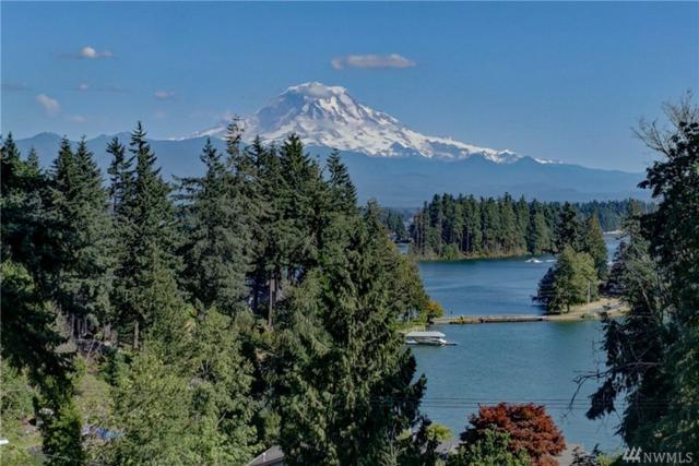 17513 Driftwood Dr E, Lake Tapps, WA 98391 (#1093629) :: Ben Kinney Real Estate Team