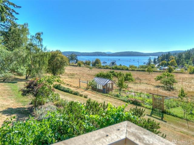253 Payton Lane, Orcas Island, WA 98245 (#1116619) :: Hauer Home Team