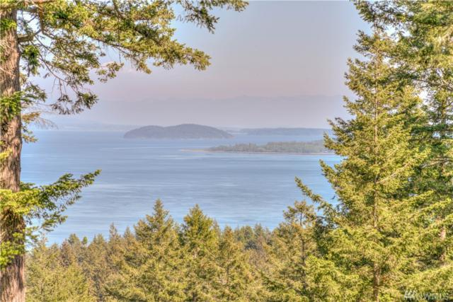 246 Misty Lane, Orcas Island, WA 98245 (#1187340) :: Real Estate Solutions Group