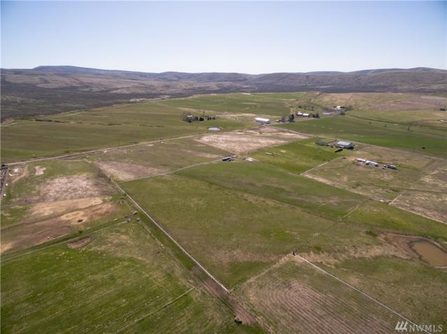 16843 Upper Badger Pocket Rd, Ellensburg, WA 98926 (#1274668) :: Better Homes and Gardens Real Estate McKenzie Group