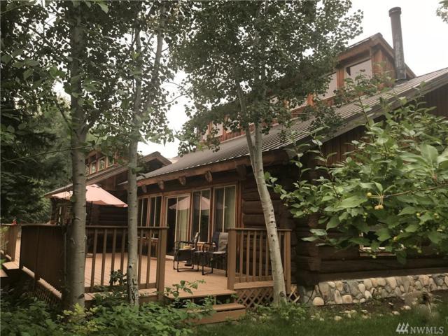 2861 Highway 153, Twisp, WA 98856 (#1283145) :: Homes on the Sound