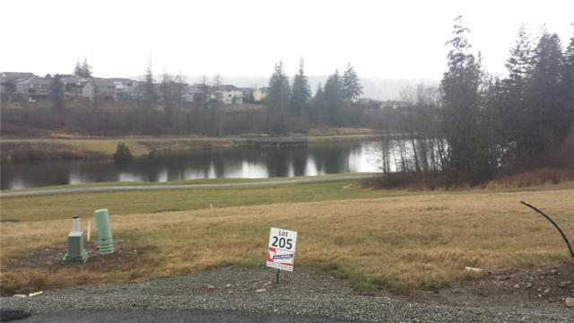 0-Lot 205 Bass Pro Place, Mount Vernon, WA 98274 (#746560) :: Ben Kinney Real Estate Team