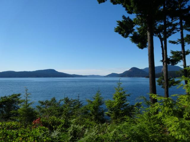Blakely Island, WA 98222 :: Real Estate Solutions Group