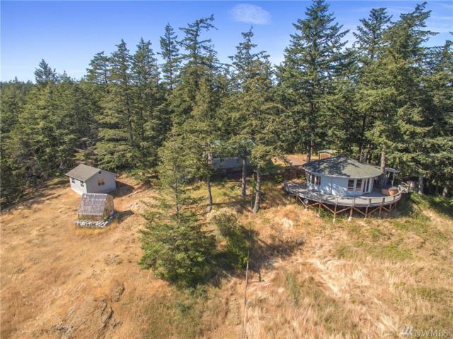 246 Misty Lane, Orcas Island, WA 98245 (#1187340) :: Homes on the Sound