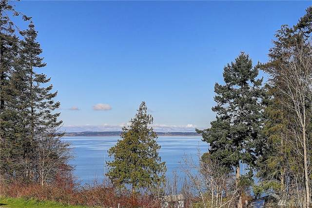 931 Rocky Point Dr, Camano Island, WA 98282 (#1411329) :: The Kendra Todd Group at Keller Williams