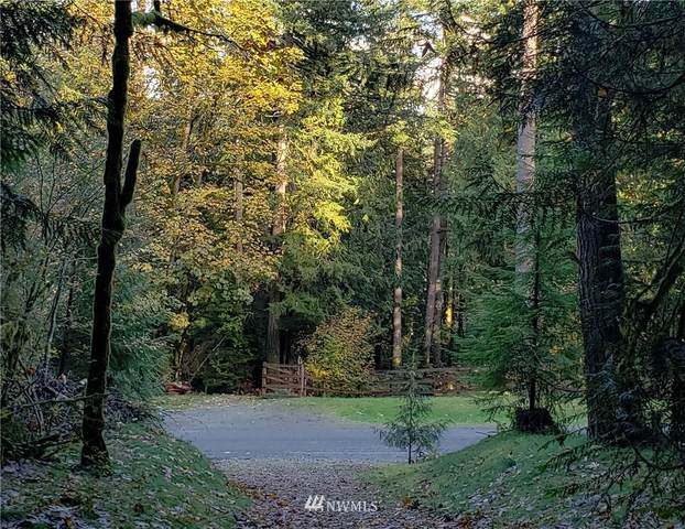 92 303rd (Lot #2) Place SE, Issaquah, WA 98027 (#1681199) :: Alchemy Real Estate