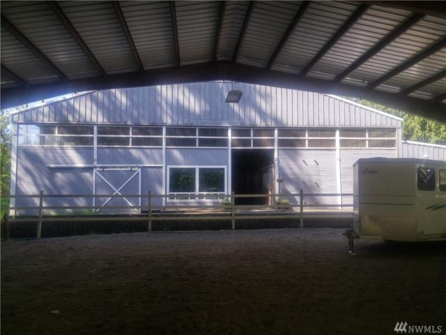 25722 SE Tiger Mountain Rd, Issaquah, WA 98027 (#1287061) :: The DiBello Real Estate Group