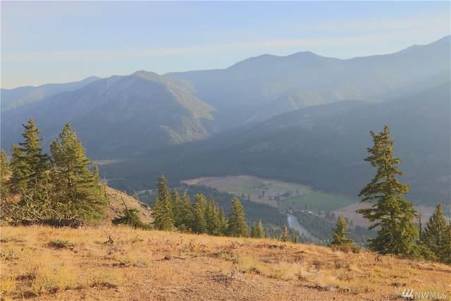 95 Flagg Mountain Loop, Mazama, WA 98833 (#1366636) :: NextHome South Sound