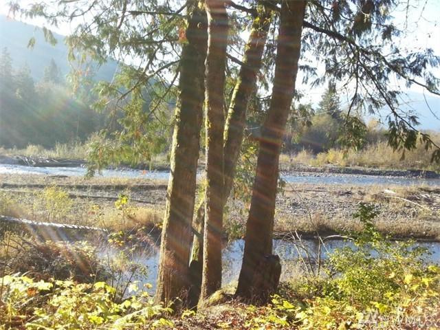 5000-xx Mosquito Lake Rd, Deming, WA 98244 (#1009114) :: Ben Kinney Real Estate Team