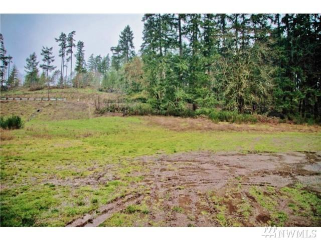 9222 Cramer Rd KP, Gig Harbor, WA 98329 (#1031903) :: Ben Kinney Real Estate Team