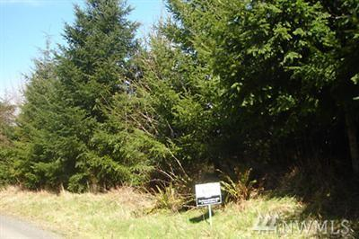 8845 Wapiti Lane SE, Tenino, WA 98589 (#1040609) :: Ben Kinney Real Estate Team