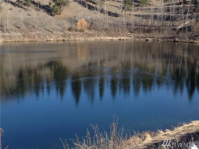 3 Mist Lake, Tonasket, WA 98855 (#1041142) :: Ben Kinney Real Estate Team