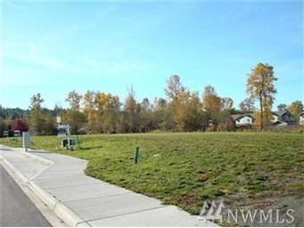 1515 N Waugh Rd, Mount Vernon, WA 98273 (#1041664) :: Ben Kinney Real Estate Team