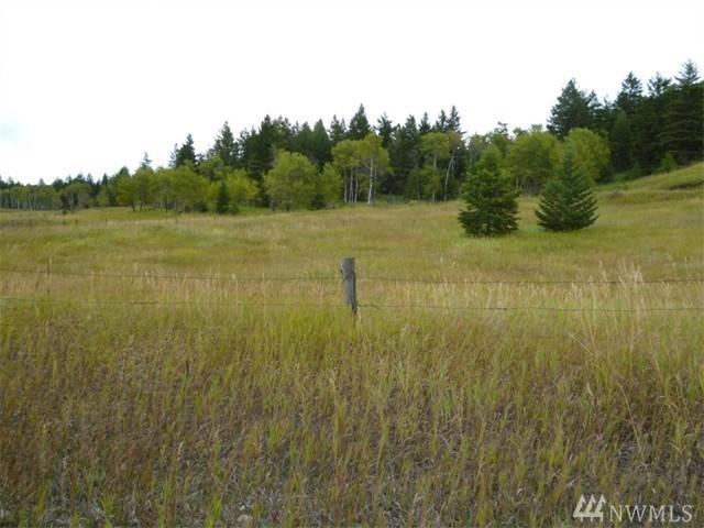 10-TBD Fletcher Mountain Rd, Oroville, WA 98844 (#1055453) :: Ben Kinney Real Estate Team