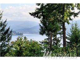 16900 SE 38th Place, Bellevue, WA 98008 (#1062391) :: Ben Kinney Real Estate Team