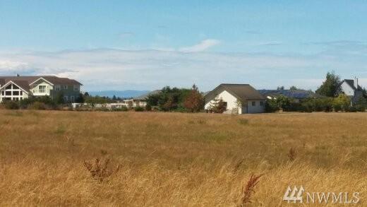 163 Three Firs Lane, Sequim, WA 98382 (#1080438) :: Ben Kinney Real Estate Team