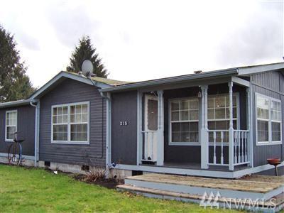 215 Monroe St, Ryderwood, WA 98581 (#1085306) :: Ben Kinney Real Estate Team