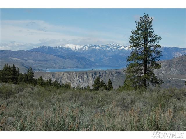 2 Corral Creek Dr, Orondo, WA 98843 (#1094924) :: Ben Kinney Real Estate Team