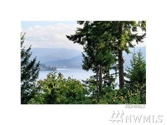 16900 SE 38th Place, Bellevue, WA 98008 (#1102307) :: Ben Kinney Real Estate Team