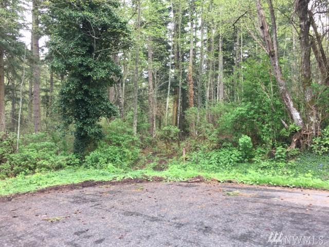 0 Woodland Dr, Camano Island, WA 98282 (#1106737) :: Ben Kinney Real Estate Team
