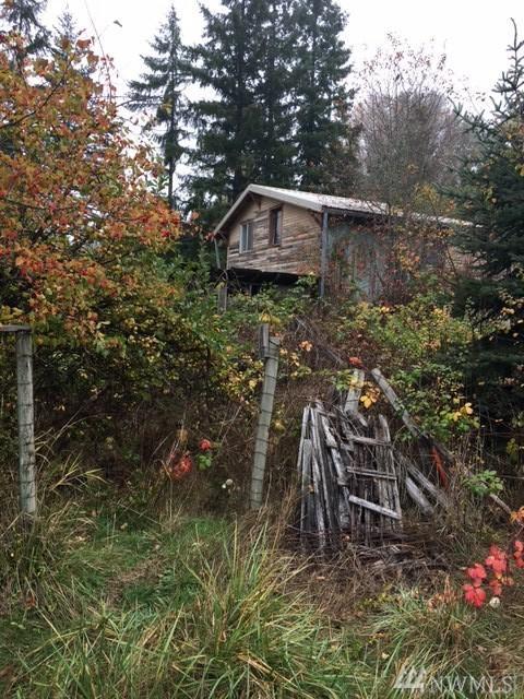 505 F St, Castle Rock, WA 98611 (#1114500) :: Ben Kinney Real Estate Team