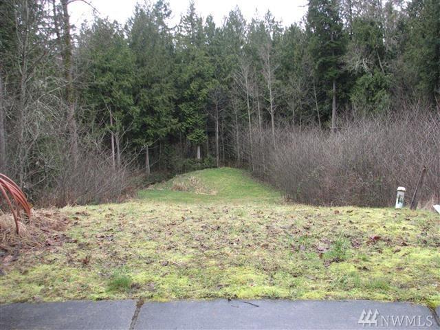 4629 S Beaver Pond Dr, Mount Vernon, WA 98274 (#1114630) :: Ben Kinney Real Estate Team