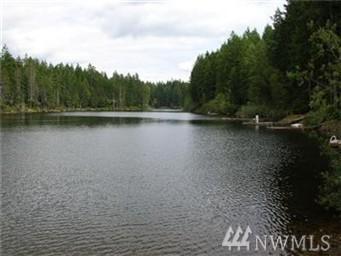 951 NE Collins Lake Dr, Tahuya, WA 98588 (#1116604) :: Ben Kinney Real Estate Team