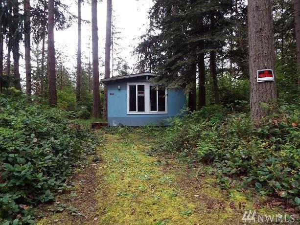 170 E Maude, Port Hadlock, WA 98339 (#1124518) :: Ben Kinney Real Estate Team