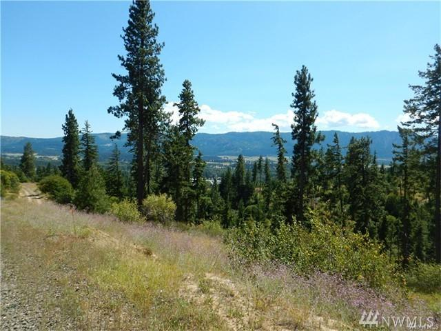0 Lot 3 Jack Pines Rd, Cle Elum, WA 98922 (#1128051) :: Homes on the Sound