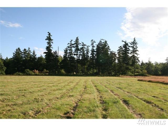 0-Lot 3 Guemes Island Rd, Anacortes, WA 98221 (#1132966) :: Ben Kinney Real Estate Team